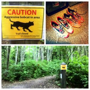 This sign on the trail during my first run seemed appropriate.