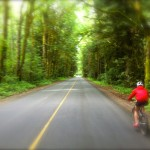 Sarah cycling on Paradise Valley Road