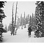 Andrea skinning in deep coastal powder on Chief Pascal.