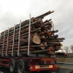 Logging truck in France. Their cargo is a little smaller than what we see in BC.